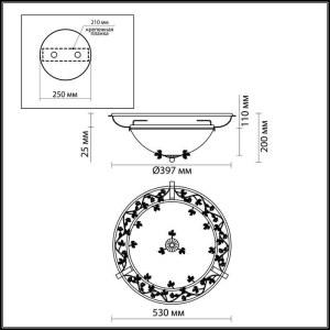 Схема Настенно-потолочный светильник - 2796/3C  в стиле Флористика