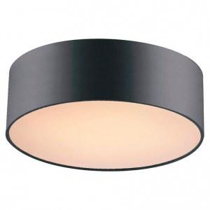 Фото 1 Накладной светильник 1514-2C1 в стиле модерн