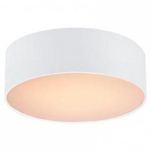 Фото 1 Накладной светильник 1515-2C1 в стиле модерн
