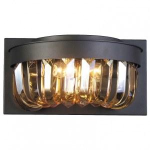Фото 1 Накладной светильник 1657-2W в стиле модерн