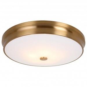 Фото 1 Накладной светильник 2375-5C в стиле модерн