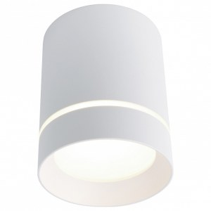 Фото 1 Накладной светильник A1909PL-1WH в стиле техно