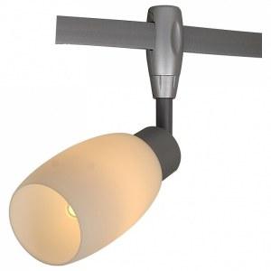 Светильник на штанге A3059PL-1SI Arte Lamp