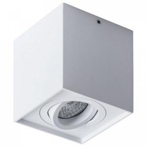 Накладной светильник A5544PL-1WH Arte Lamp