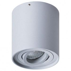 Накладной светильник A5645PL-1GY Arte Lamp