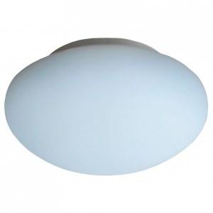 Накладной светильник A7824PL-1WH Arte Lamp