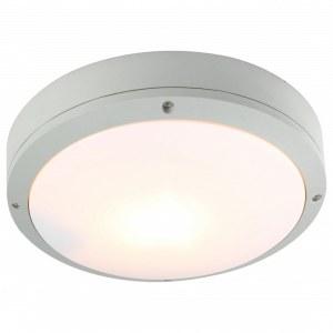 Накладной светильник A8154PF-2GY Arte Lamp