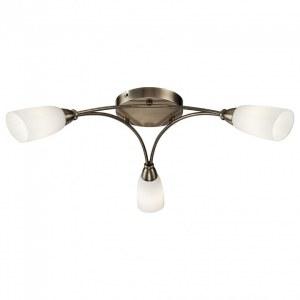 Фото 1 Накладной светильник FR5021CL-03BZ в стиле классический