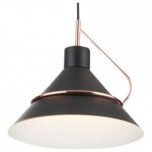 Фото 1 Подвесной светильник FR5025PL-01B в стиле лофт