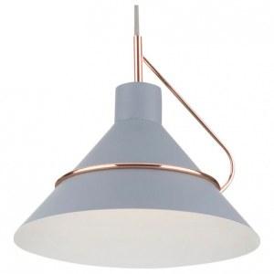 Фото 1 Подвесной светильник FR5025PL-01GR в стиле лофт