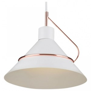 Фото 1 Подвесной светильник FR5025PL-01W в стиле лофт