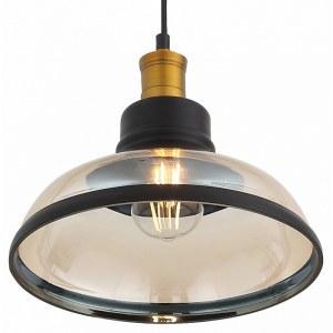 Фото 1 Подвесной светильник SL263.403.01 в стиле модерн