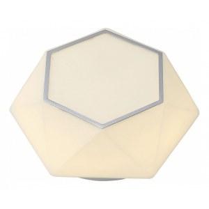 Настенно-потолочный светильник ST-Luce 558 SL558.502.01