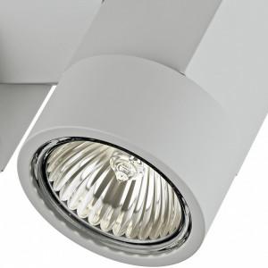 Светильник на штанге 051030 Lightstar