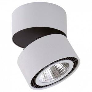 Светильник на штанге 213839 Lightstar