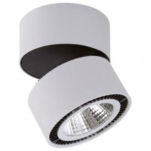 Светильник на штанге 214839 Lightstar